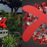 Riot Games đã hỗ trợ cả trăm tỷ đồng vào công cuộc chống dịch Covid-19
