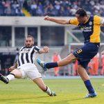 Luca Toni treo giày: Đóa hoa nở muộn đã khép cánh